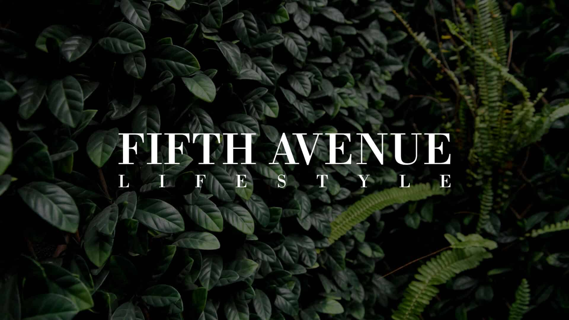 Fifth Avenue Lifestyle Digital Marketing